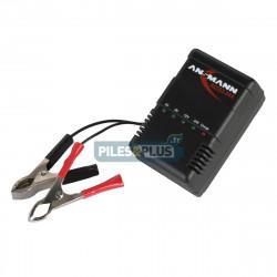 Chargeur pour batterie au plomb 2V à 24V Ansmann